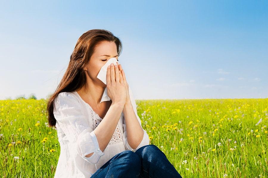 Remèdes allergies - La Bourdon du Bourdon